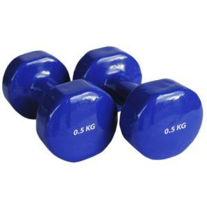 Гантели виниловые 2 х 0,5 кг (синие, пара)