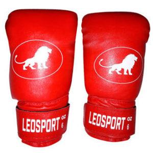 Перчатки боксерские Master (кожзаменитель)